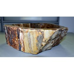 Wash basin of petrified wood, no. 1571