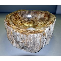 Wash basin of petrified wood, no. 1679