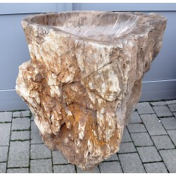 Ice fountain, kneip pool of petrified wood, no. 1826